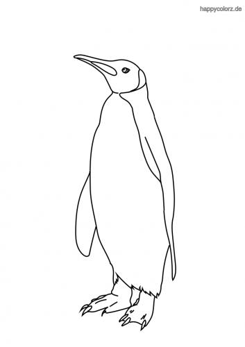 Pinguin ausmalen
