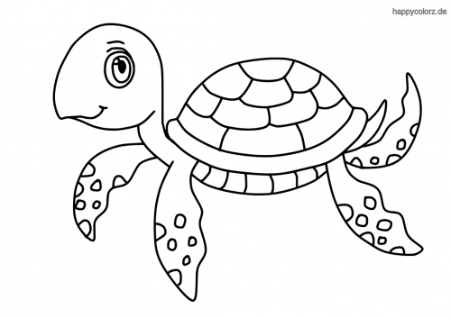 Einfache Schildkröte Malvorlage