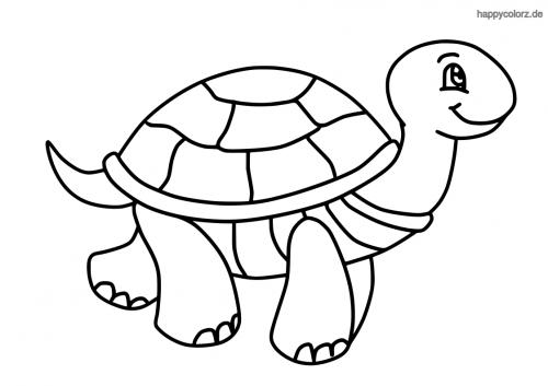 Lachende Schildkröte ausmalen