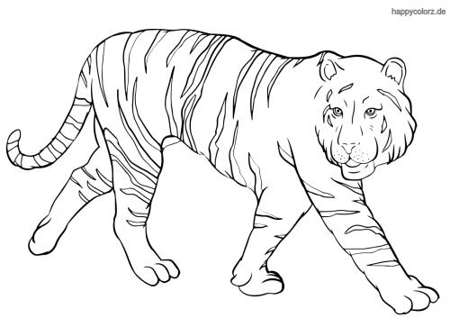 Schleichender Tiger Ausmalbild
