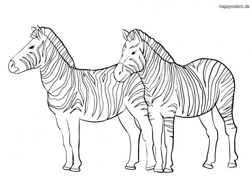 Zebra-Paar Malvorlage