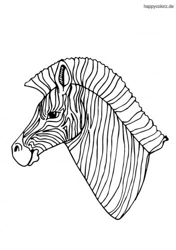Zebrakopf Malvorlage